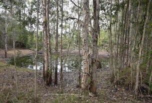 (Lot 21)  2923 Old Tenterfield Road, Busbys Flat, NSW 2469