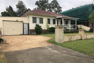 18 Treloar Crescent, Chester Hill, NSW 2162