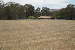 Lot 2 McDiarmids Road, Violet Town, Vic 3669