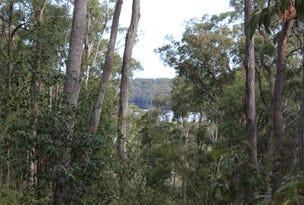 Lot 19 Old Nelligen Road, Nelligen, NSW 2536
