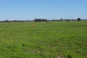 0 Texas-Yelarbon Road, Beebo, Qld 4385