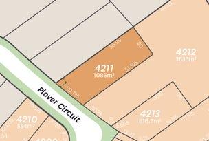 Lot 4211 Plover Circuit, Aberglasslyn, NSW 2320