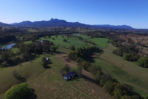118 Stoddarts Road, Tyalgum Creek, NSW 2484