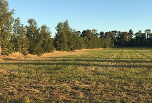 Lot 81, North Barham North Barham Road, Barham, NSW 2732