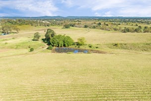 Lot 114 Mount Harris Drive, Maitland Vale, NSW 2320