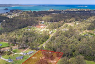 38 Curtis Road, Catalina, NSW 2536