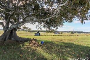 230 Euroka Road, Euroka, NSW 2440