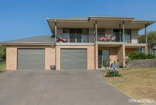 20 Springfields Drive, Greenhill, NSW 2440