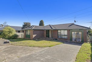 11 Raven Grove, Bidwill, NSW 2770