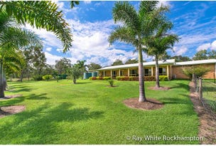 272 Raspberry Creek Road, Yaamba, Qld 4704