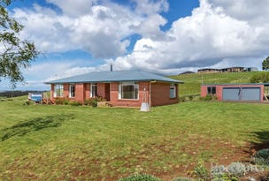 193 Pine Road, Penguin, Tas 7316