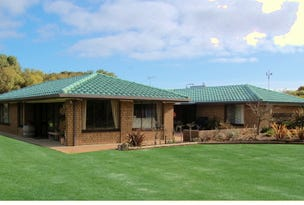 8817  Beachport to Millicent Road, Beachport, SA 5280