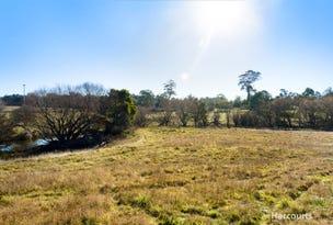 50 Bishopsbourne Road, Carrick, Tas 7291