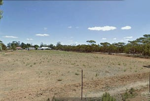 Pinnaroo, address available on request