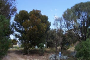 44 Ti-Tree Road, The Pines, SA 5577