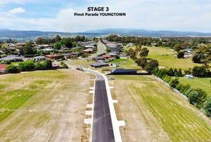 PINOT PARADE, Youngtown, Tas 7249