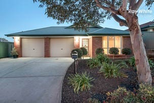 23 Jackaroo Crescent, Walkley Heights, SA 5098