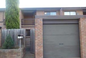 50 Provost Street, North Adelaide, SA 5006