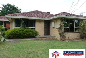 119 Carlton Road, Dandenong North, Vic 3175