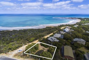 138 Great Ocean Road, Anglesea, Vic 3230