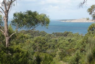 Lot 2 Badger Corner Road, Lady Barron, Tas 7255