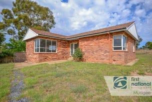 118B Abbatoirs Road, Mudgee, NSW 2850