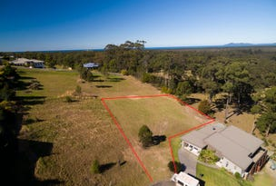 Lot, 623 The Bridle Path, Tallwoods Village, NSW 2430
