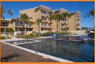 53/1 Grenada Way - Leeward Apartments, Parrearra, Qld 4575