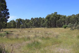 537 Broadleaf Park Road, Tumbarumba, NSW 2653