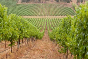 Schuberts Vineyard, Schuberts Road, Lobethal, SA 5241