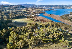 Lot 100 Evans Road, Port Huon, Tas 7116