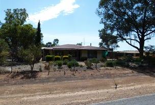 102 Main Road, Robertstown, SA 5381