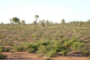 Cunnamulla, address available on request