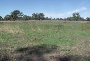 Lot 110 Old Comaum Road, Comaum, SA 5277