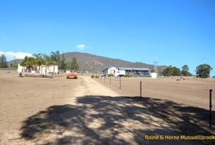 388 Sandy Creek Road, Muswellbrook, NSW 2333