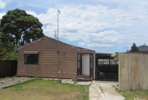 20A Lovoni Street, Cabramatta, NSW 2166
