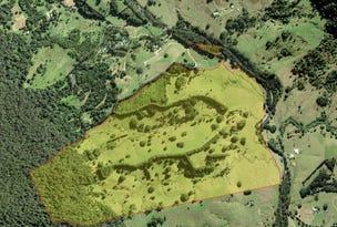 165 Limpinwood Valley Road, Limpinwood, NSW 2484