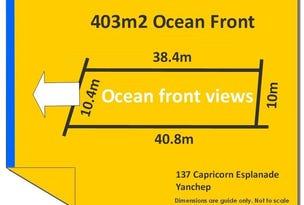 137 Capricorn Esplanade, Yanchep, WA 6035