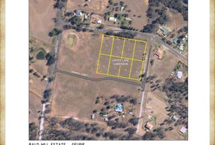 Lot 8, 51 Old Dubbo Road, Geurie, NSW 2818