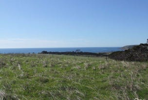 Lot 23 North Coast Road, Wisanger, SA 5223