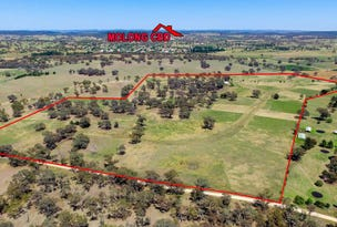 00 Euchareena Road, Molong, NSW 2866