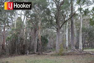 Lot 1 Gardiners Creek Road, St Marys, Tas 7215