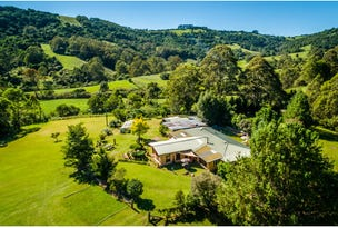 413 Johnsens Road, Dorrigo, NSW 2453
