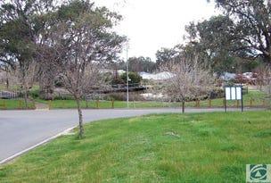 9 Crawford Circuit, Glenroy, NSW 2640