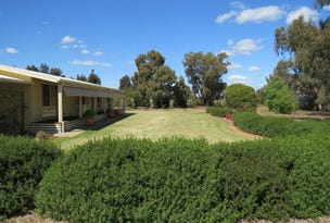 21380 Riverina Highway, Deniliquin, NSW 2710