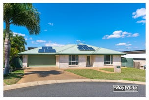 14 Cycad Court, Norman Gardens, Qld 4701
