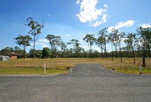 Lot 47 Parklands Drive, Gulmarrad, NSW 2463
