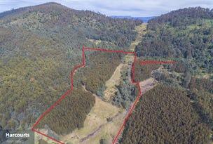 1012 Halls Track Road, Pelverata, Tas 7150