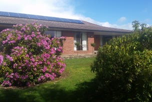 91 Francistown Road, Dover, Tas 7117