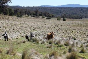 5403 Captains Flat Road, Braidwood, NSW 2622